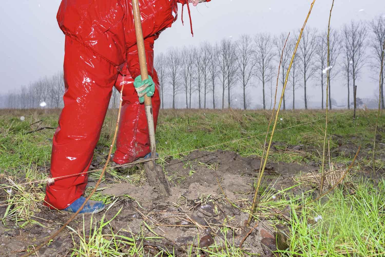aanleg van een groot voedselbos in Schijndel | sas schilten fotografie